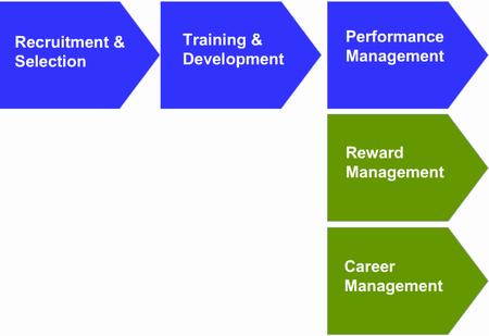 HR training cycle